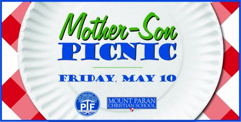 Mother-Son Picnic