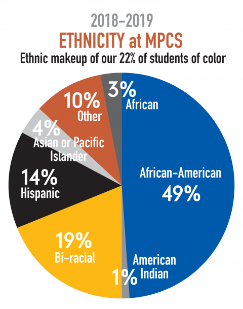 diversity-and-inclusion Ethnicity at MPCS